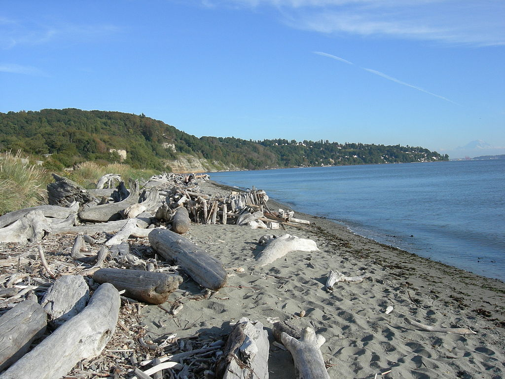 1024px-Seattle_-_Discovery_Park_08
