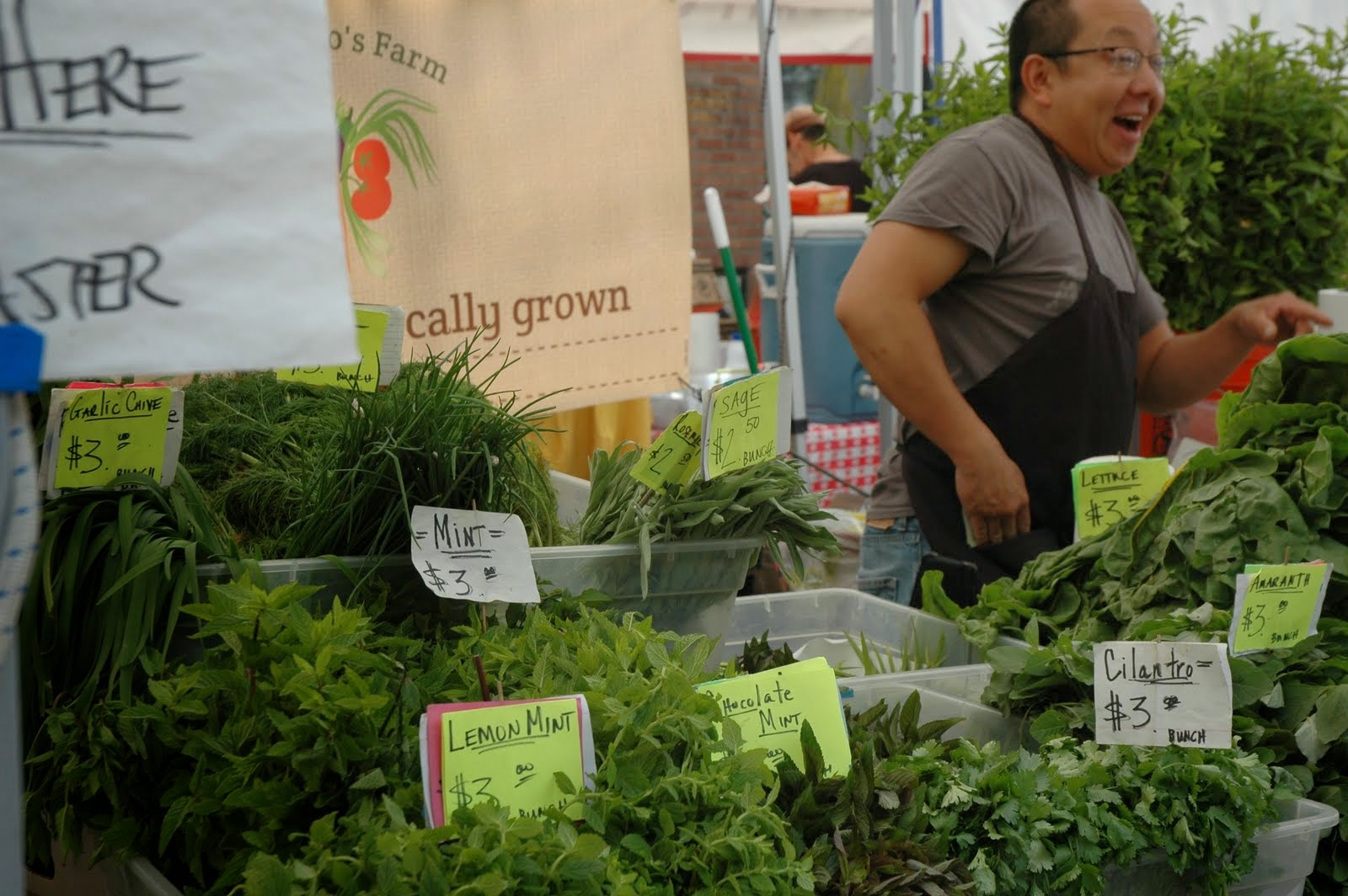 Hundreds of different leafy vegetables exist in the world. The Ballard Farmers Market sells approximately all of them.