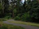 burke_gilman_trail_2