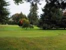 golfcourse_1