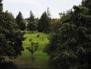 golfcourse_2