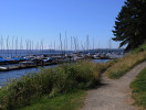 lake_washington_boats