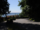 madrona_view_1