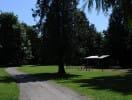 ravenna_park_picnic