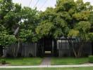 university_home_trees