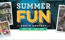summer-fun-header